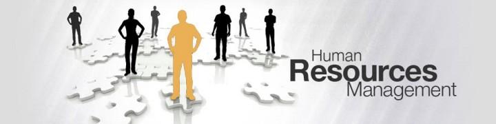 fungsi-manajemen-sdm-bagi-manager
